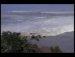 쓰나미 당시 생존자가 찍어 올린 동영상