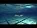 박태환보다 좀 수영좀 하는듯?