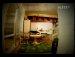 [뮤비][MV] - 타샤니 - 하루하루