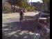 자전거의굴욕