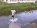 즐거운 다이빙 도중 !! 이런일이 !!