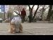 경기도청 벚꽃축제에 간 햄토킹