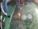 불장난하다 신발에 불 붙어..