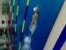 수영은 나의전부^^