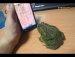 두꺼비 능욕하기ㅋㅋㅋ