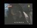(2NE1 TV) 산다라박 과 CL