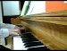 신세경 피아노 river flows in you(이루마 원곡)